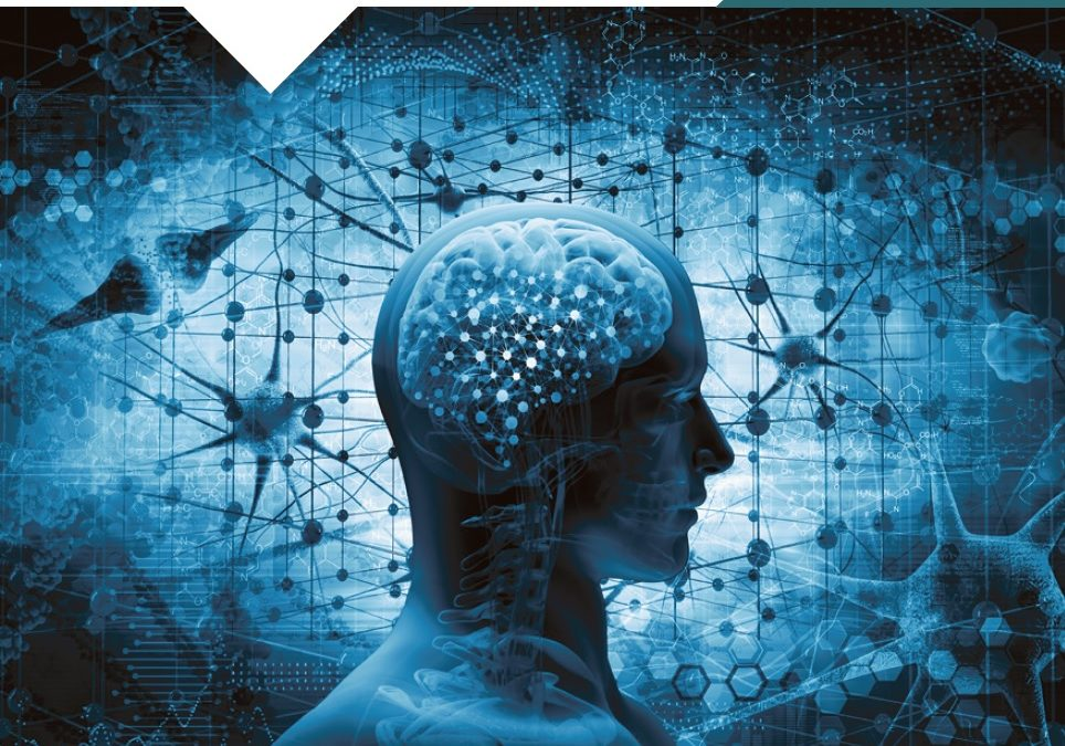 Neurobioethics and Transhumanism Masterclass: Neurosciences that Love Human Beings