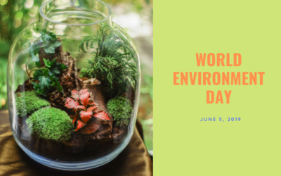 World Environment Day: taking actions to preserve our environment, our human rights and our health